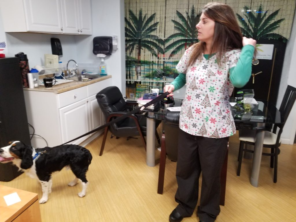Dog Therapy (6)